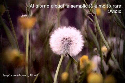 Al giorno d'oggi la semplicità e molto rara. Ovidio