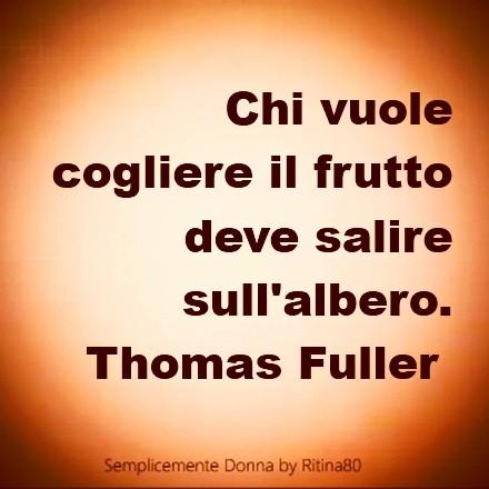 Chi vuole cogliere il frutto deve salire sull'albero. Thomas Fuller