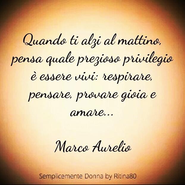 Quando ti alzi al mattino, pensa quale prezioso privilegio è essere vivi: respirare, pensare, provare gioia e amare... Marco Aurelio