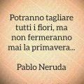 Potranno tagliare tutti i fiori, ma non fermeranno mai la primavera... Pablo Neruda