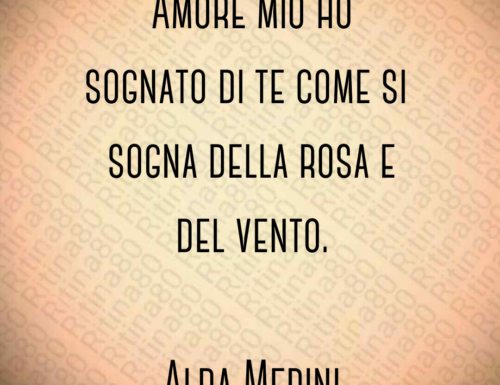 Amore mio ho sognato di te come si sogna della rosa e del vento. Alda Merini