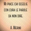 Mi piace chi sceglie con cura le parole da non dire. A. Merini